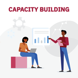 Graphics Website_2_Capacity Building.png